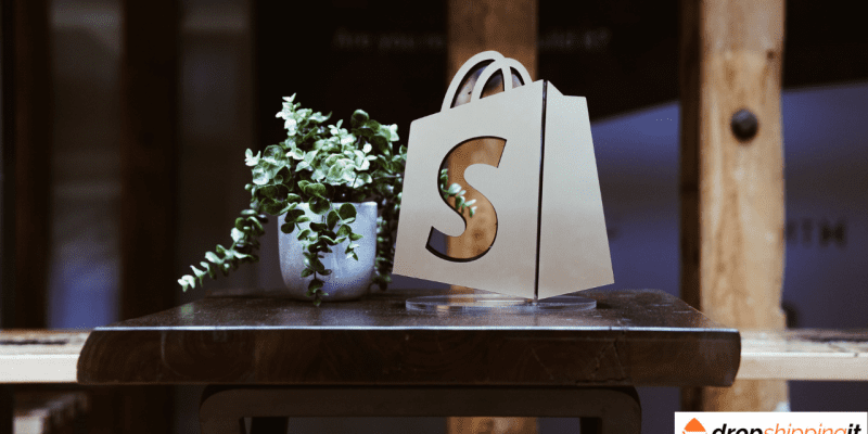 Types Of Shopify Stores : The 5 Categories To Look Into