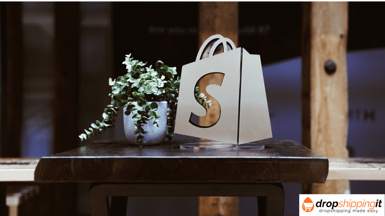 Types of shopify stores