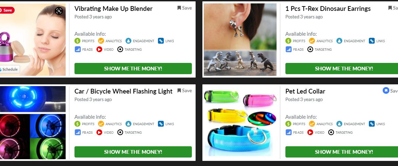 profitable Shopify dropshipping store